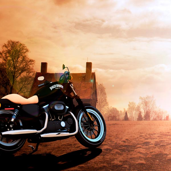 Harley Iron 883 1:1